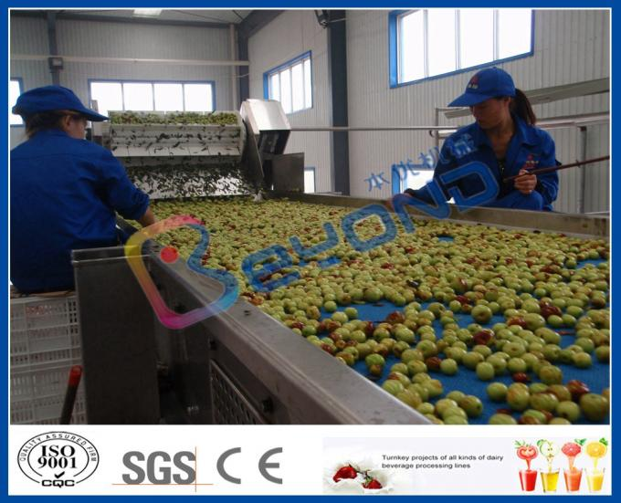 Chaîne de fabrication chinoise de jus de fruit de date, installation de transformation de pulpe du fruit ISO9001