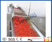 Chine Machine de presse-fruits de tomate de transformation de fruits, usine de fabrication électrique de presse-fruits de tomate et machines usine