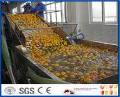 Chine Chaîne de fabrication orange économiseuse d'énergie avec la machine de remplissage de bouteilles en verre/ANIMAL FAMILIER usine