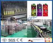 Juice Making Equipment Fruit Juice Processing Line With 2T/D – 1000T/D Capacity