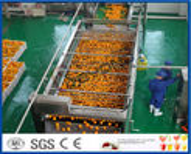 10TPH Automatic Orange Juice Extract Orange Processing Line For Juice Making Factory