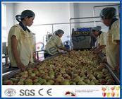 Chine Chaîne de production de jus de fruit de pêche/abricot/prune machines de transformation de fruits usine