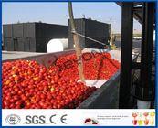 Sauce tomate faisant la chaîne de production de sauce tomate de machine avec système chaud/froid de coupure
