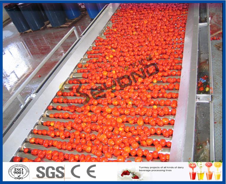 Tomato Planting Machine Tomato Processing Line Full / Semi Automatic 2 - 50 T/H