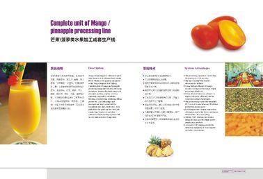 Chaîne de fabrication d'ananas de production de jus d'ananas pour le jus de fruit d'ananas