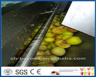 Chaîne de fabrication d'Apple de la CE avec le système de contrôle liquide de concentration de désinfection automatique